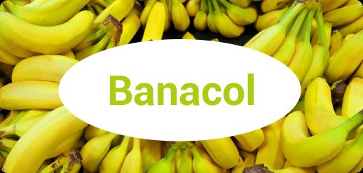 Tropifruit brands - Banacol