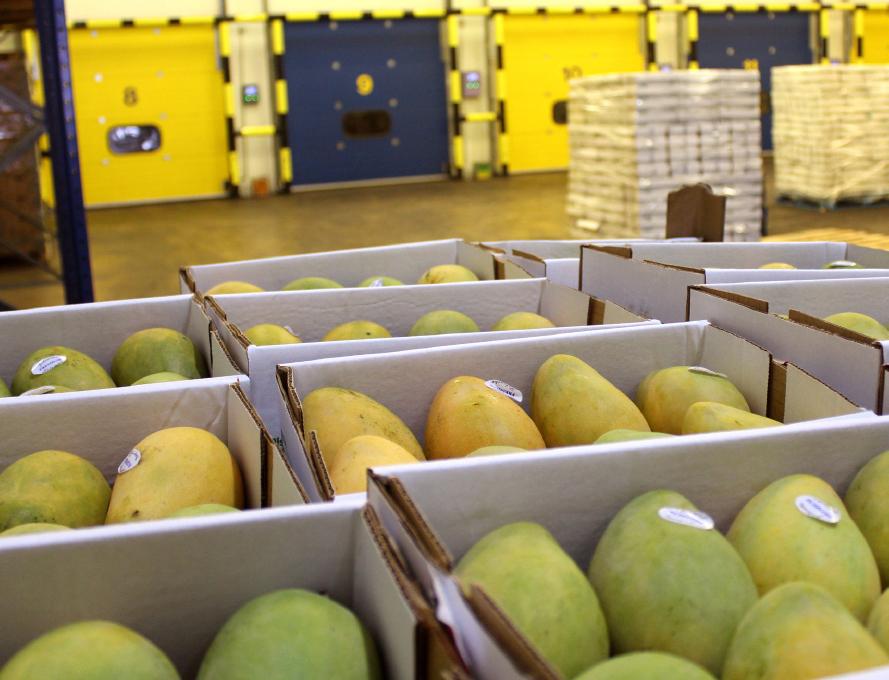 Tropifruit has 32,000sqft of produce storage capacity
